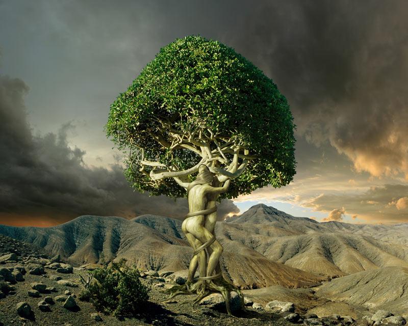 Tree Of Love Leinwandbild Romantische Bilder Fantasy
